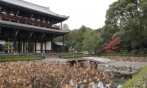 東福寺・山門2