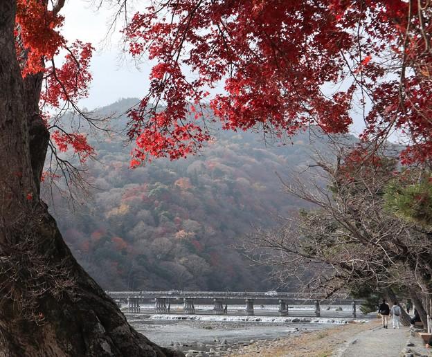 渡月橋遠景4