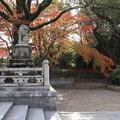 Photos: 八坂神社・西楼門内の狛犬