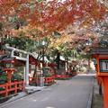 Photos: 八坂神社・北参道2