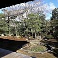 本法寺・巴の庭3
