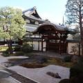 Photos: 本法寺・十(つなし)の庭