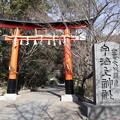 Photos: 宇治上神社・鳥居