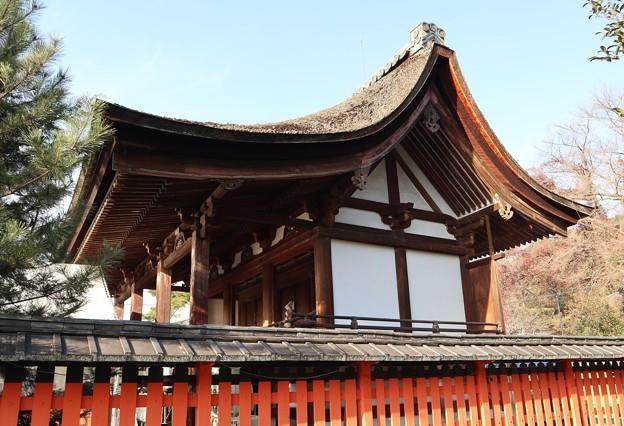 宇治神社・本殿
