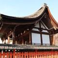 Photos: 宇治神社・本殿