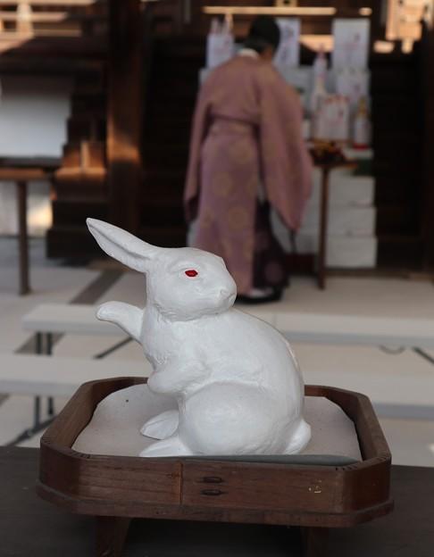 宇治神社・見かえり兎