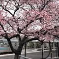 Photos: JR桃山駅2