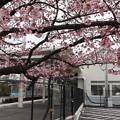 JR桃山駅3