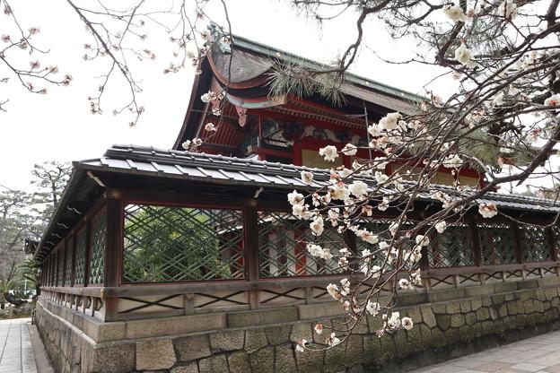 御香宮神社・本殿2