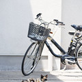 Photos: 自転車番