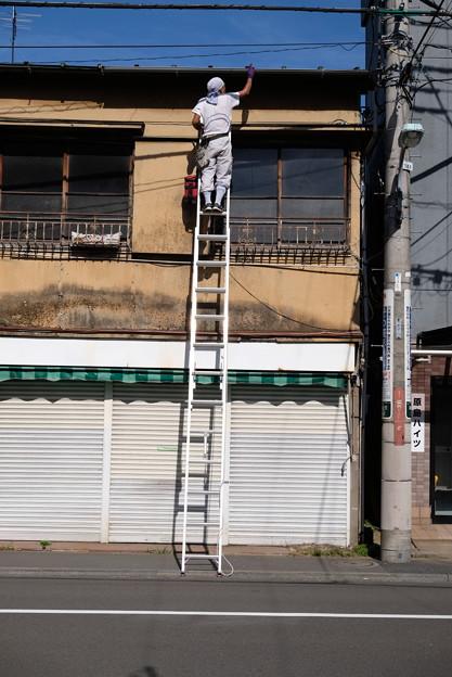 写真: 梯子