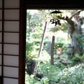 Photos: 風鈴