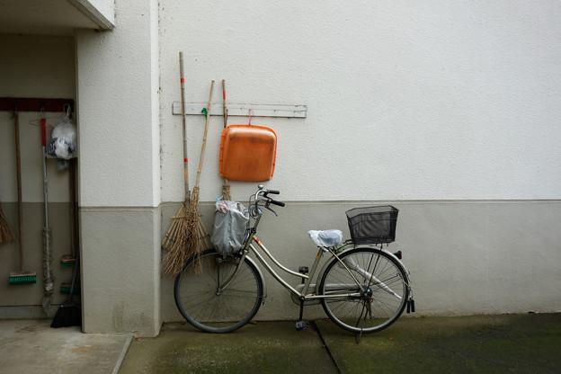 箒と自転車