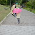 Photos: 雨、降るかな
