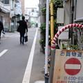 Photos: お買物道路
