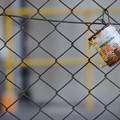 Photos: 空き缶