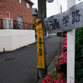 Photos: 急坂で鋭角