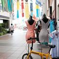 Photos: 川端