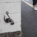 Photos: バンクシー?