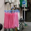 Photos: ピンクのタオル