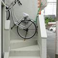 Photos: 階段に自転車