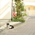 Photos: 休息中