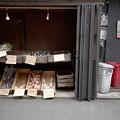 Photos: 販売所