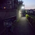 Photos: 夜の遊歩道