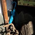 Photos: 青い傘