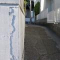 Photos: ひび