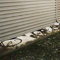 Photos: 車輪の影