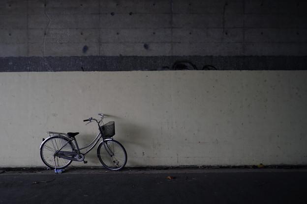 トンネルの自転車