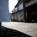 街猫の日々_06
