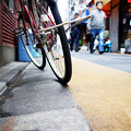Photos: 街猫の日々_07