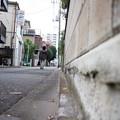 Photos: 街猫の日々_09