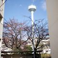 Photos: 給水塔の見える場所