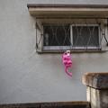 ピンクの象