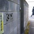 Photos: 通りすがりの