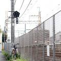 Photos: 線路わき