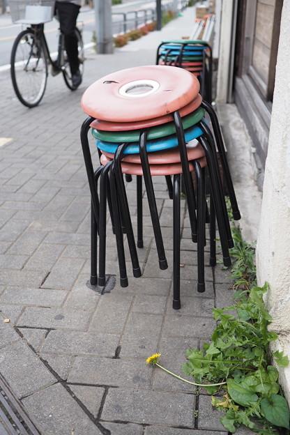 椅子と蒲公英