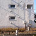 Photos: 斜光