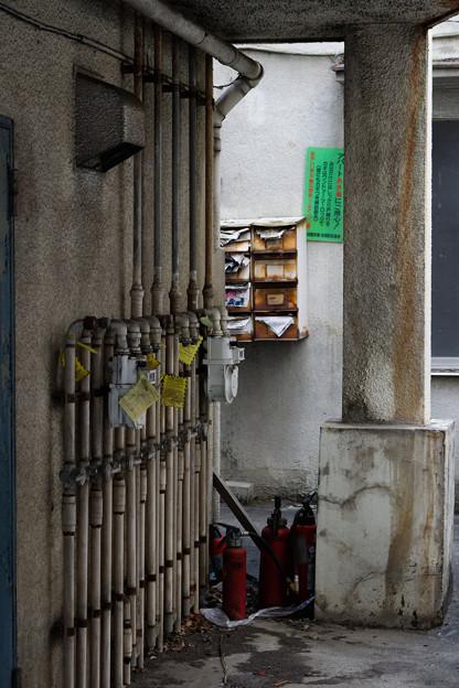 Photos: 消火器たち