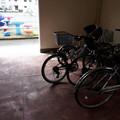 Photos: 魚と自転車