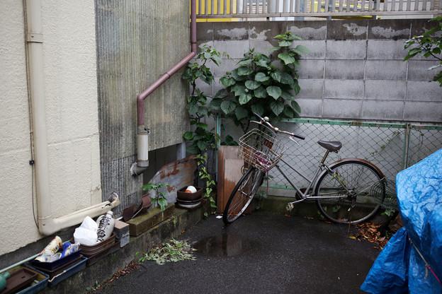 Photos: 行き止まり
