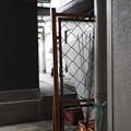 Photos: 置き傘