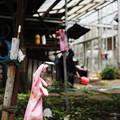 Photos: ピンクの手袋