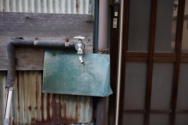 Photos: 蛇口