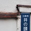 Photos: 井の頭