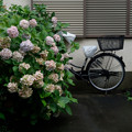 Photos: アパート