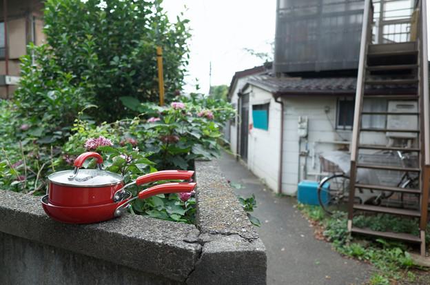Photos: 鍋